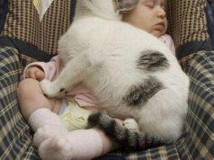 Cat sleeping on baby