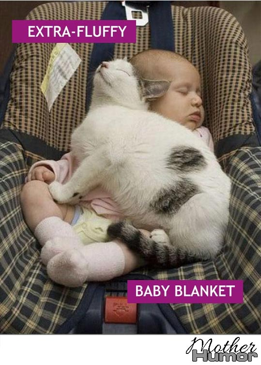 Cat sleeping on baby