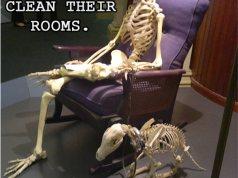 Skeleton sitting in chair