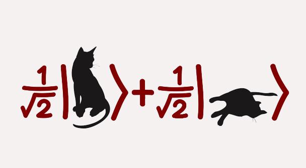 schrödinger s cat is