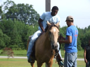 Horse Lessons (60)