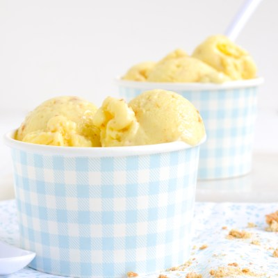 Lemon Cream Pie Frozen Yogurt plus GIVEAWAY!