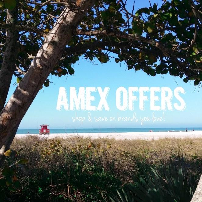 amex3-2