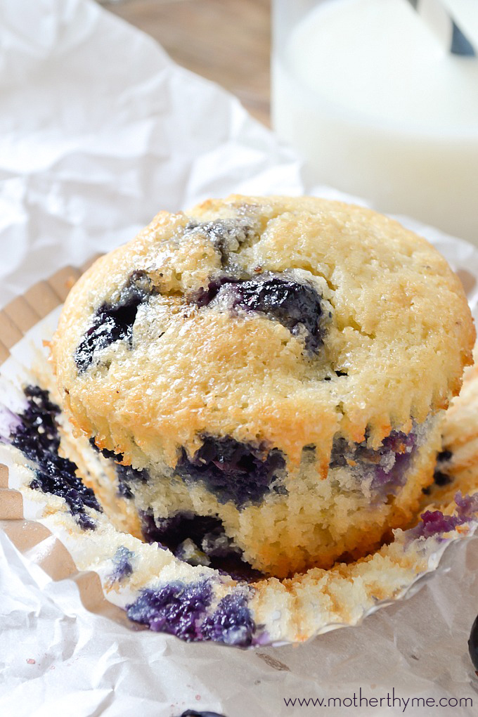Blueberry Muffins   Mother Thyme