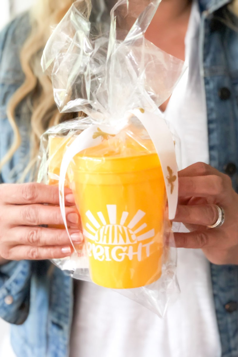 BUSY BEE GIFT SHINE BRIGHT COLLECTION
