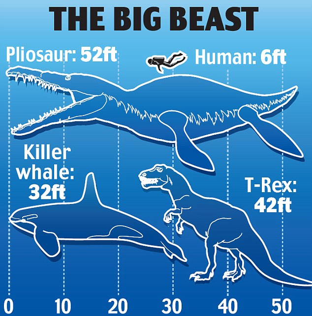 sea monster 6 Colossal sea monster of Dorset that could have eaten T Rex for breakfast