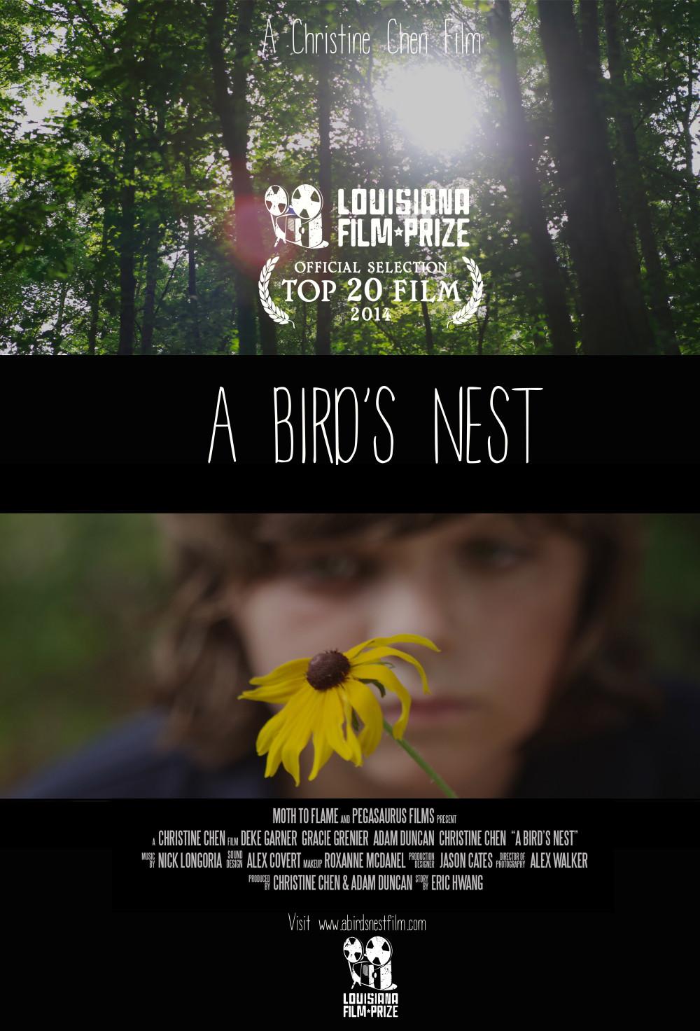 A-Birds-Nest-Still-4-e1408501142230