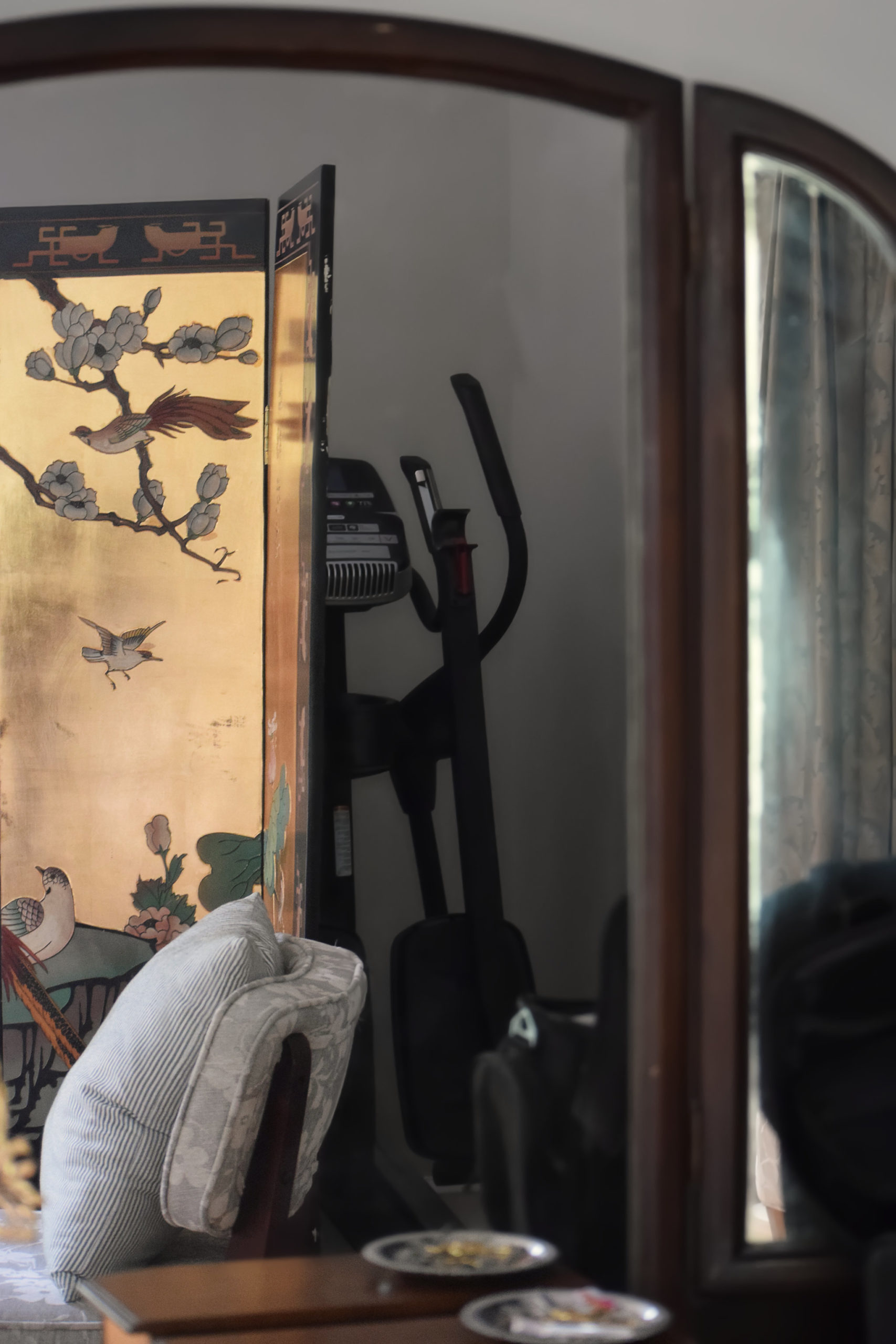 reflection showing elliptical hidden behind chinoiserie screen