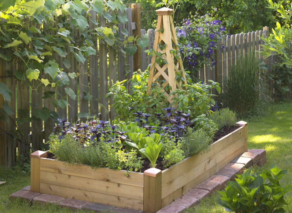 square foot garden with obelisk trellis