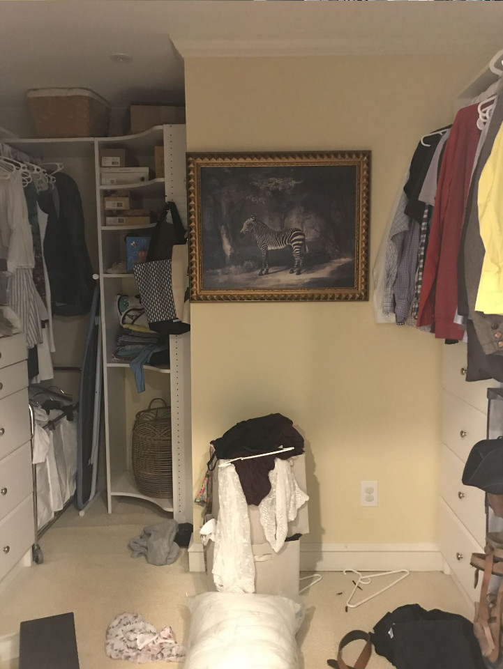 walk in closet before with curtain and zebra artwork