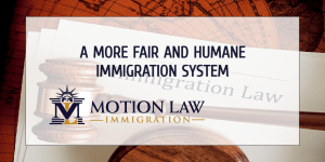 Executive action needed to improve the immigration system