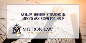 Asylum seekers ask the Biden administration for help