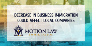 Reports shows that business immigration is essential for local companies