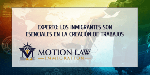 Experto comenta acerca del rol de los inmigrantes en la creación de empleos