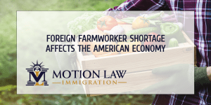 The US needs foreign nationals to fill farmworker gaps