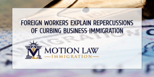 Qualified foreign workers comment on business immigration restrictions