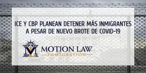 Trump pierde las elecciones y las fuerzas fronterizas incrementan detención de inmigrantes