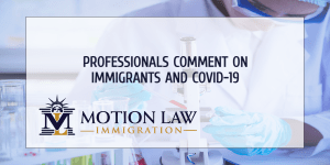 Experts comment on the border situation and COVID-19