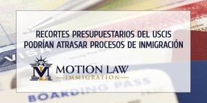 Utilice su tiempo sabiamente y presente un caso sólido de inmigración a pesar de los retrasos