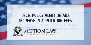 New policy alerts displays details about increase in immigration application fees