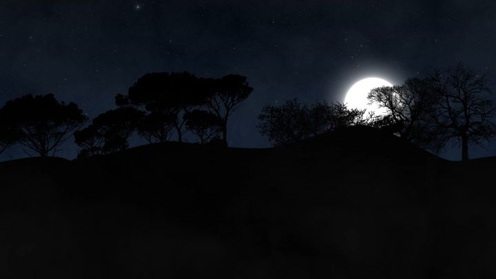 Forest and moon at night with fogg moving through a spooky forest