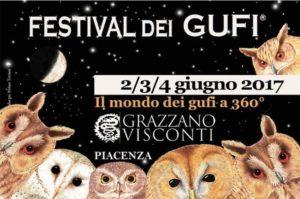 Festival Gufi copia