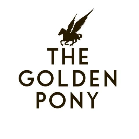motodj-artists-the-golden-pony-000
