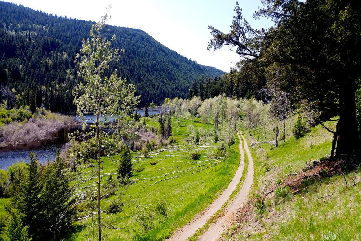 A winding alpine road overlooking a lake motorcycle tour Pemberton