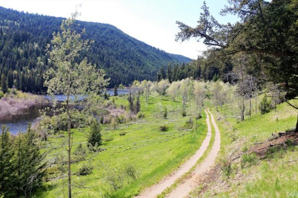 Standing above hat creek road on a motorcycle tour, dirt road, water and trees