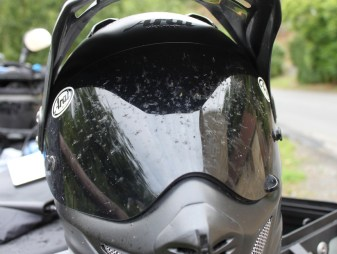 First day of riding and many dead flies