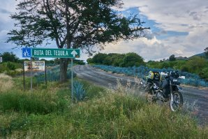 motophil-tequila-routa del tequila-tequila plant-dr650