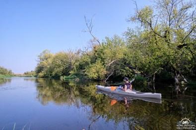 Niedaleko ujścia kanału Łasica