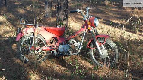 Honda CT90 in the woods