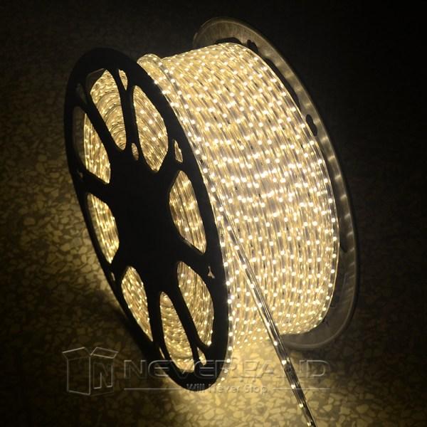 1m-50m 110v 120v 3528 Smd Led Strip Rope Light In Outdoor
