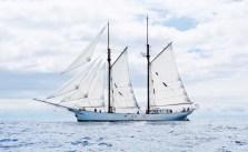 Yelkenli yük gemisi Avontuur