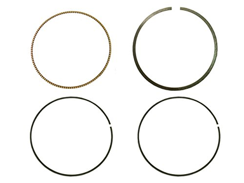 Top 46 Piston Rings