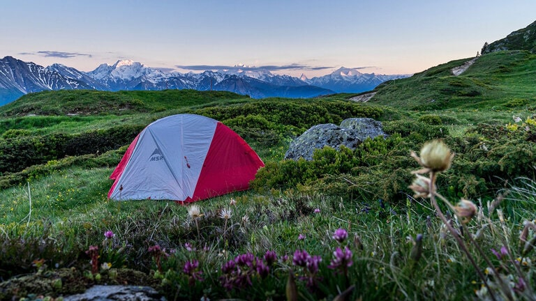 tent in field of flowers overlooking mountain range - motorcycle camping