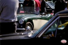 orleans-expo-voitures-mail-austinhealey