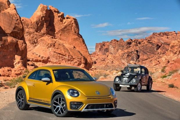 01_Beetle Dune