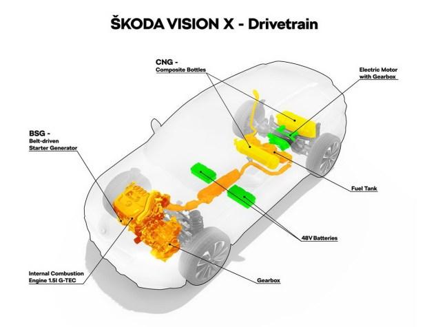 motori360-f4 skoVision GIN 03 018