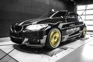McChip-DKR MC320 BMW 220i