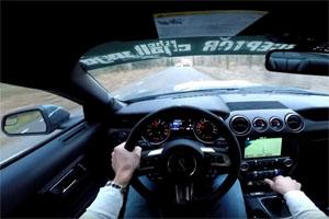 Ford Mustang Shelby GT350 Police Interceptor