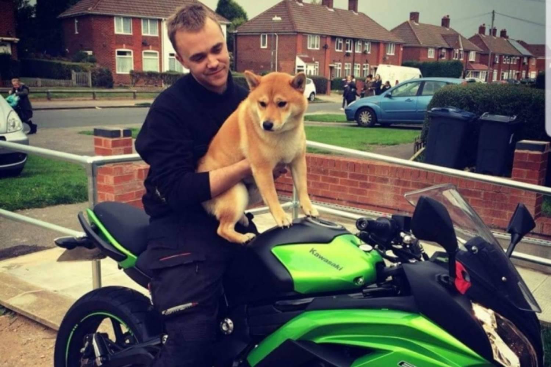 Britain's best biking pets