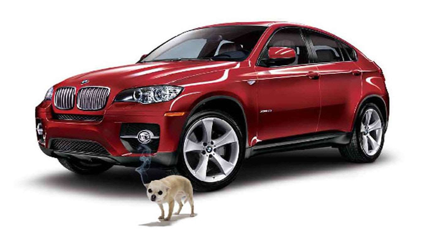 BMW Canine Repellant Alloy Protection