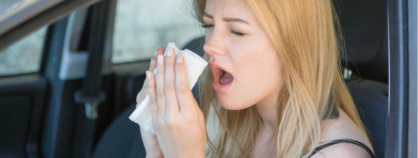 Advice for drivers with hay fever