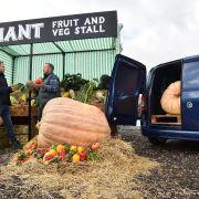 Vauxhall Combo giant veg stand