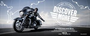 Grafica-DiscoverMore