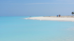 crociera_bahamas (5)