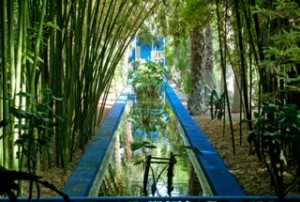 Marrakech les Jardin Majorelle 700