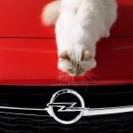 Opel-Corsa-Lagerfeld-292914
